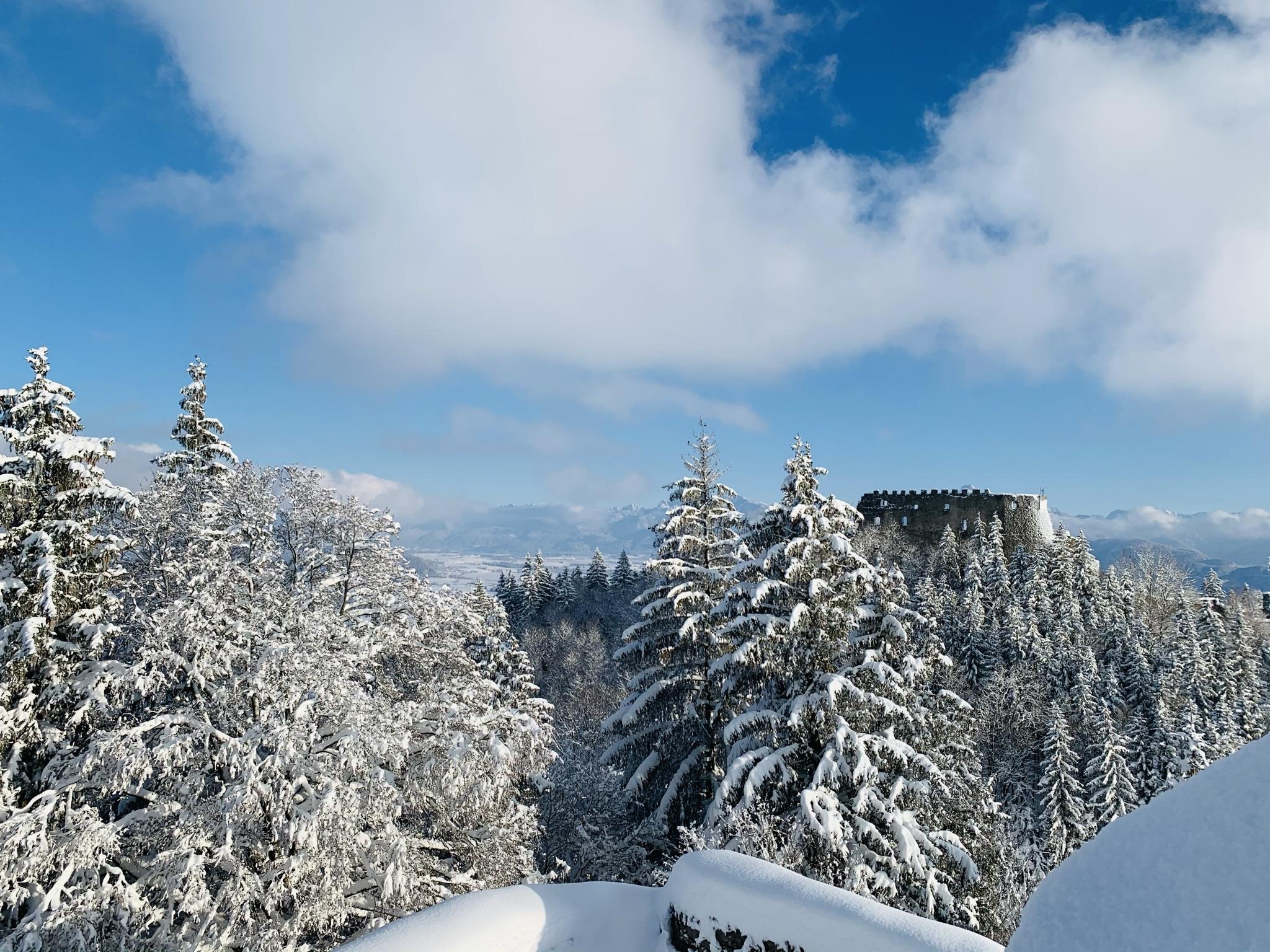 Winterwanderung zu den Burgen Hohenfreyberg und Eisenberg